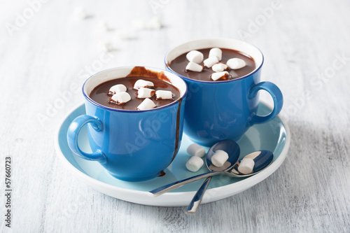 Foto op Canvas Chocolade hot chocolate with small marshmallows