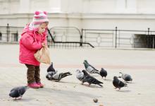 Toddler Feeding Doves
