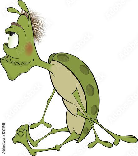 Photo Stands Draw Green insect cartoon