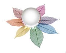 Crystal Ball On Chakra Colour Skeleton Leaves