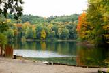 Jesień na drzewach nad jeziorem