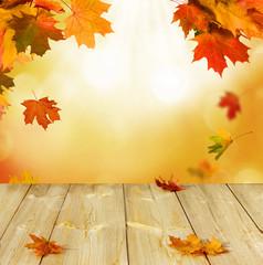 Naklejka na ściany i meble autumn leaves