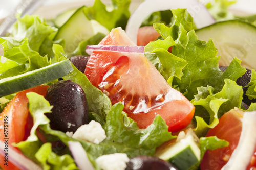 Fotografie, Obraz  Homemade Organic Greek Salad