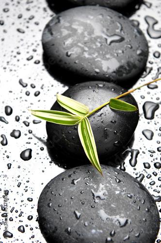 rzad-zen-kamienia-i-bambusa-lisci-z-kropli-wody