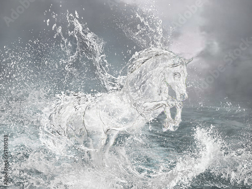 Horse from water. - 57805128