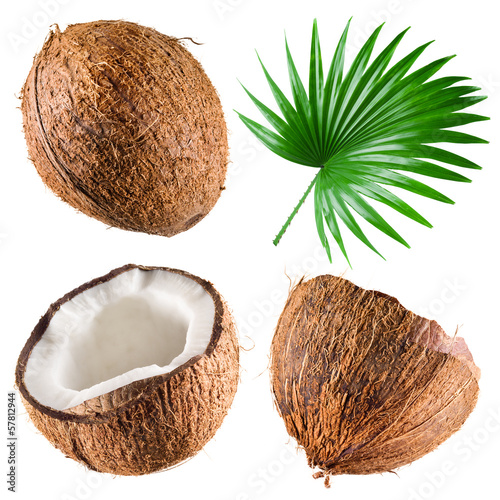 Foto auf Leinwand Palms Coconuts with palm leaf on white background. Collection