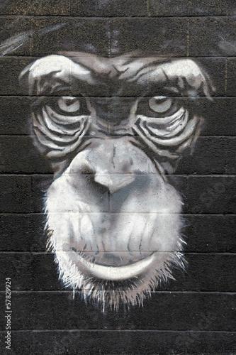 Fototapeta premium szympans graffiti mono 0499f