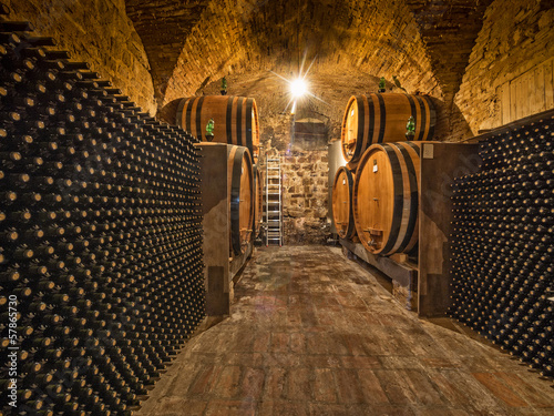 wine cellar with bottles and oak barrels Canvas Print