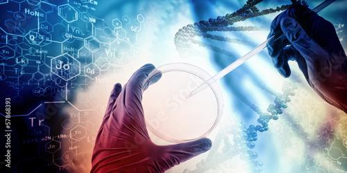Fotografía  DNA molecule