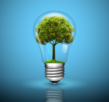 Light Bulb With Green Tree Gro...