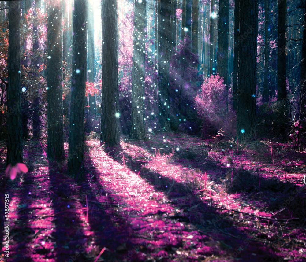 Fototapeta Fantasy Landscape. Mysterious Old Forest.