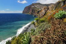 Cliff Cabo Girao (Madeira, Por...