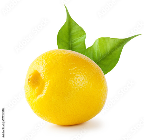 Foto  Sour lemon with leaves