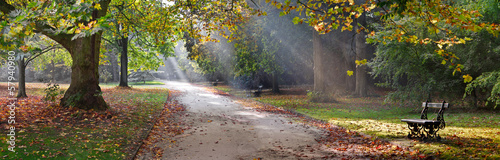 Path in the autumn park. Autumn Landscape.
