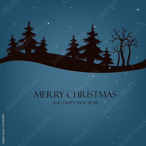 Poster Hibou Beautiful Christmas night
