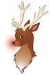 Rudolf mit leuchtender Nase