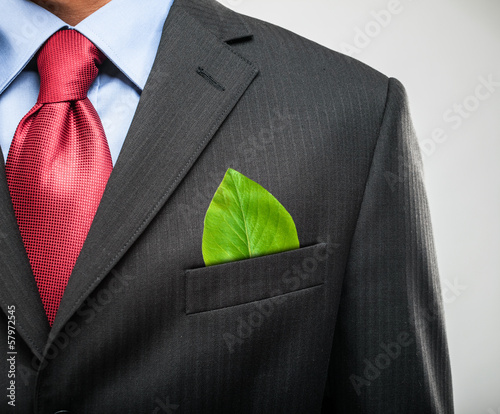 Fotografie, Obraz  Businessman keeping a green leaf in his pocket