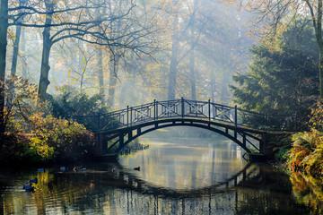 Jesen - Stari most u jesenskom maglovitom parku