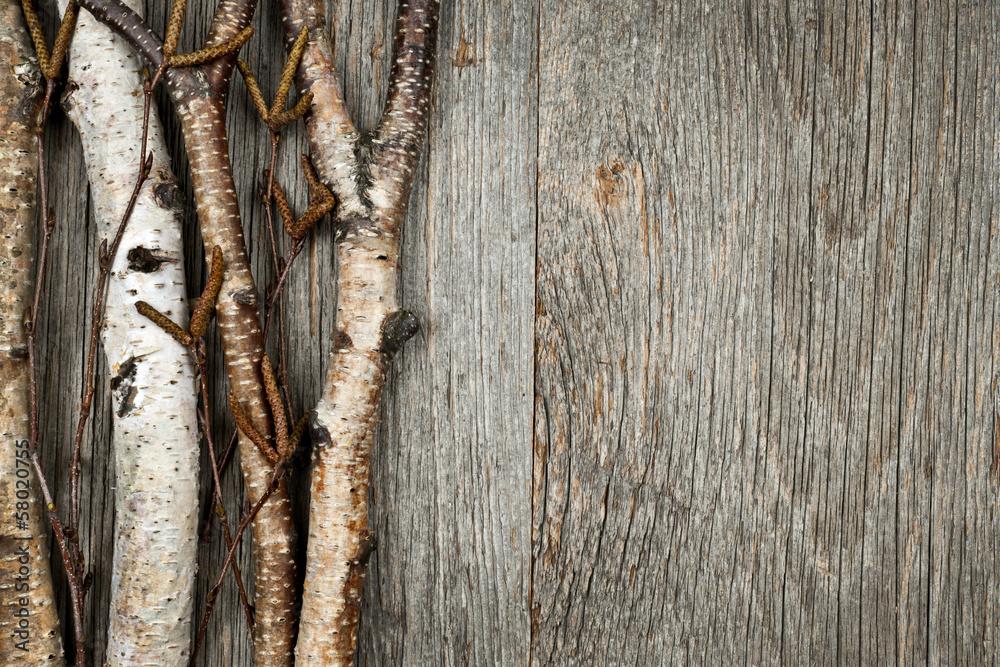 Birch branches background