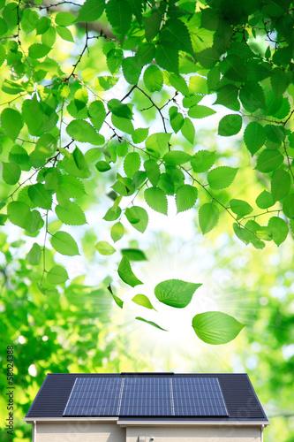 Fotobehang Zwavel geel 舞い散る葉っぱと太陽光発電の家