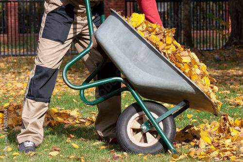 Canvas Print Autumn cleanning in the garden