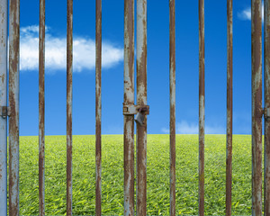 Locked rusty door with beautiful landscape, green meadow blue sk
