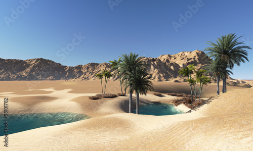 Photo sur Aluminium Desert de sable Oasis