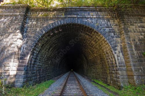 Fotografie, Obraz  The Circum-Baikal Railway Tunnel