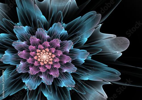 kwiat-fraktali