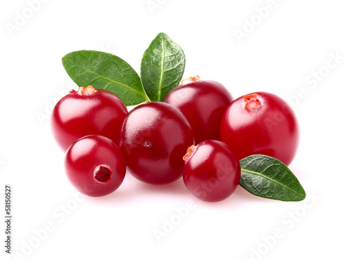 Fotografia  Beauty cranberry in closeup