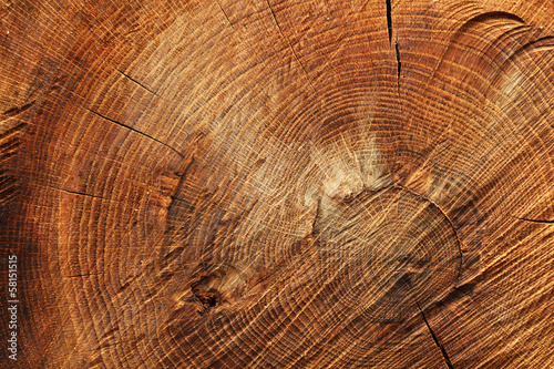 Wooden background #58151515