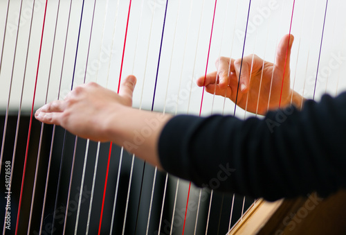 Obraz na plátne Male musician playing the harp
