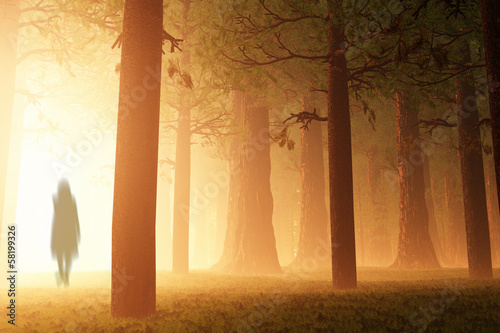 Foto  Deep Forest Fairy Tale Scary Scene Yurei Ghost 3D render