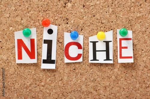Fotografie, Obraz  The word Niche on a cork notice board