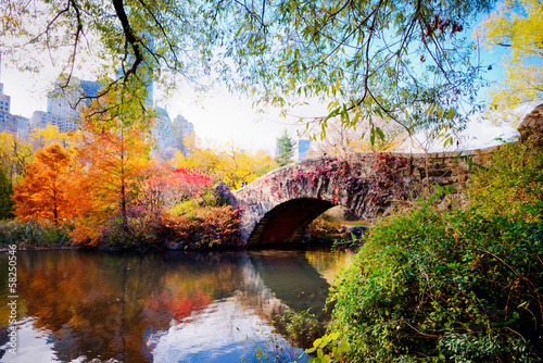 Autumn in Central Park, New York - 58250546