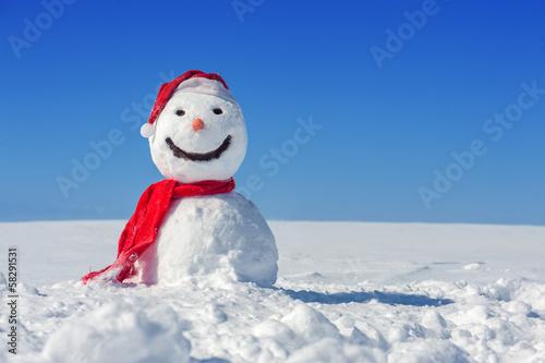 Fotografie, Obraz  snowman
