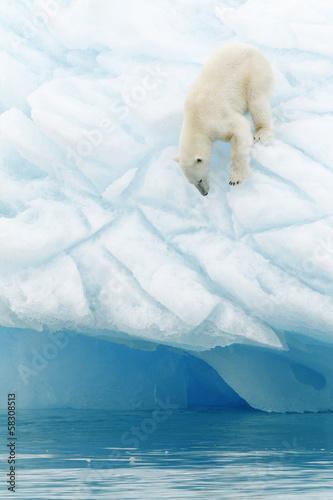 Foto op Plexiglas Arctica Svalbard