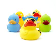 Duck,s