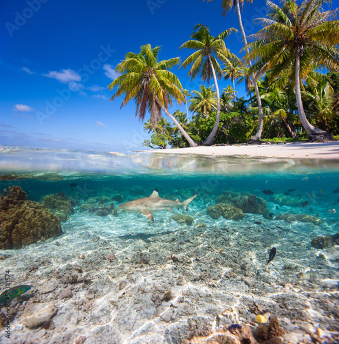 Türaufkleber Tropical strand Tropical island under and above water