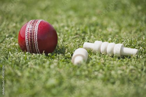 Carta da parati Close-up of a cricket ball with bails