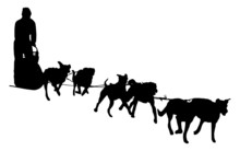 Dog Sled Silhouette On A White...