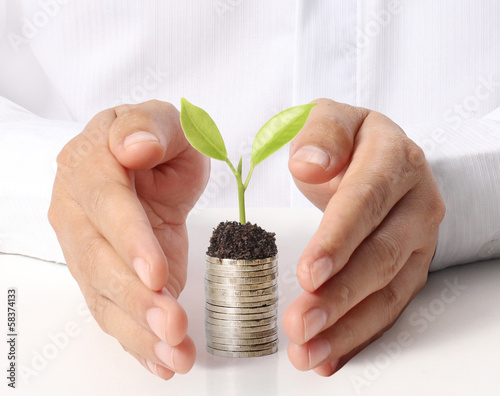 Fotografía  Businessman holding plant sprouting