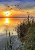 desde la orilla del lago - 58389901