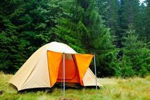 Orange Tent Mounted Near Trees