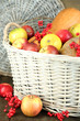 Juicy apples and pumpkin in wooden basket on table close-up