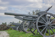 Vintage Cannons In A Row
