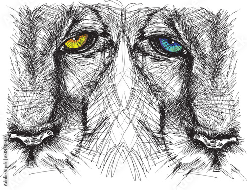 Foto auf Leinwand Handgezeichnete Skizze der Tiere Hand drawn Sketch of a lion looking intently at the camera