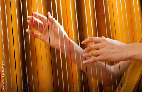 Fotografiet Woman playing the harp
