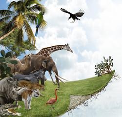 Panel Szklany Podświetlane Zwierzęta Nature Concept