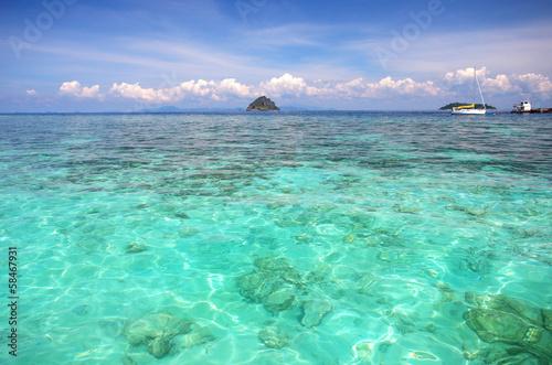 Wall Murals Green coral Phi Phi island. Thailand